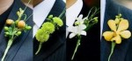 Boutonniere for groom and groomsmen